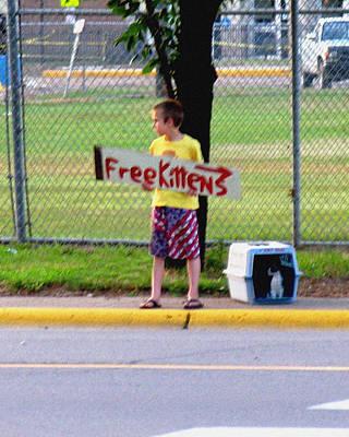 Free Kittens Poster