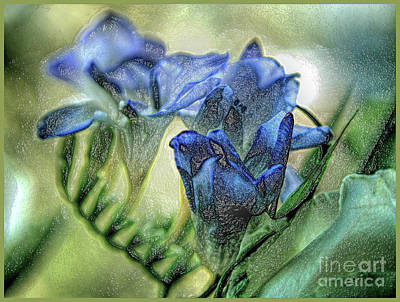 Poster featuring the photograph Freesia Carved In Blue by Lance Sheridan-Peel