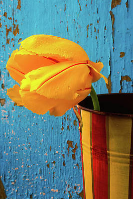 French Tulip In Old Vase Poster by Garry Gay
