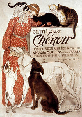 French Veterinary Clinic Poster by Granger