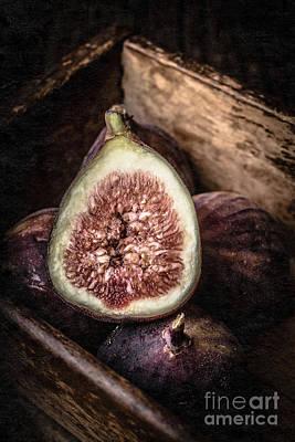 Fresh Figs Still Life Poster by Edward Fielding