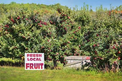 Fresh Local Fruit Poster by Lori Deiter