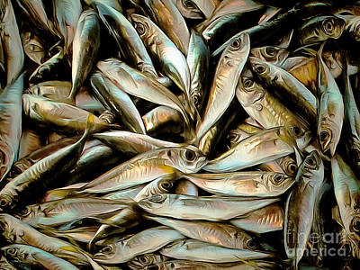 Fresh Sardine Fish Catch Of The Day Painterly 20170913 Poster