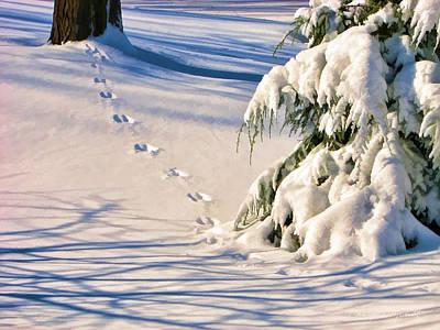 Fresh Snow Prints Poster