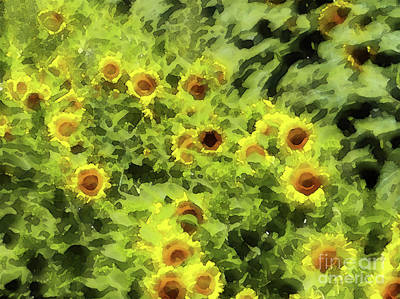 Fresh Sunflowers Poster by Methune Hively