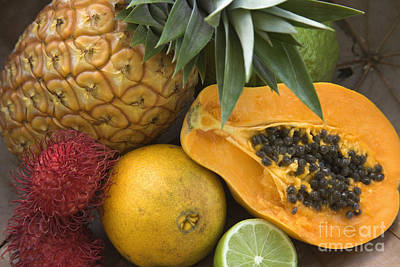 Fresh Tropical Fruits Poster