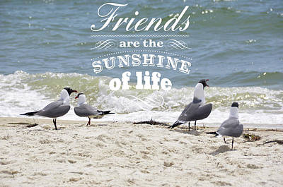 Poster featuring the photograph Friends In Life by Jan Amiss Photography