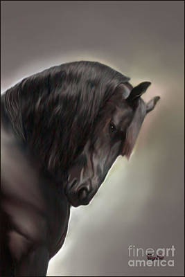 Friesian Stallion Poster