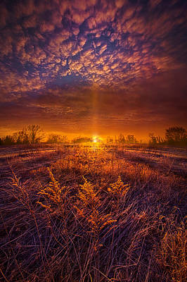 From Here I Walk Poster by Phil Koch