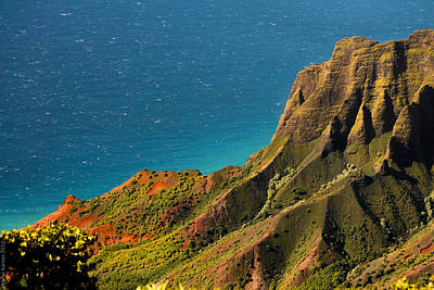Poster featuring the photograph From The Hills Of Kauai by Debbie Karnes