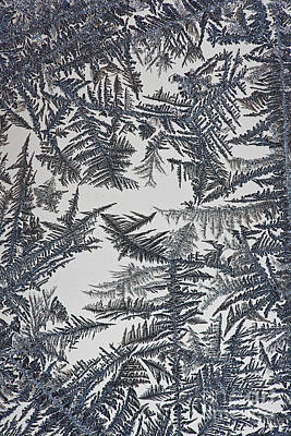Frost On Window Poster