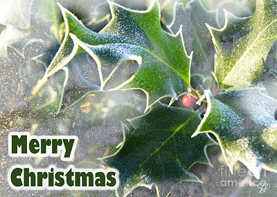 Poster featuring the photograph Frosty Holly by LemonArt Photography