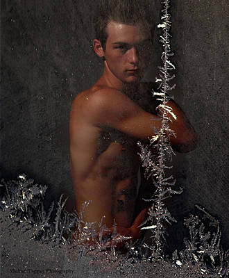 Poster featuring the photograph Frosty by Michael Taggart