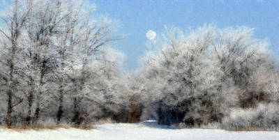 Poster featuring the photograph Frosty Moon Trail by John Hix