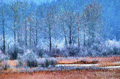 Frosty Morning At The Marsh Photo Art Poster by Sharon Talson