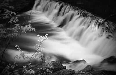Frothy Falls Poster