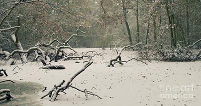 Frozen Fallen Wide Poster