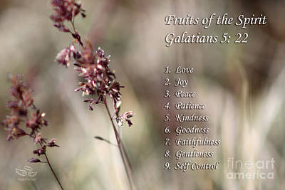 Fruits Of The Spirit Poster by Beauty For God