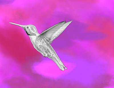 Fuchsia Jewel Poster by David Millenheft