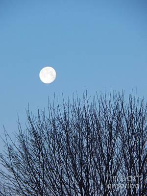 Full Moon At Dawn Poster