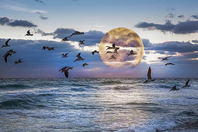 Full Moon Moment Poster by Debra and Dave Vanderlaan