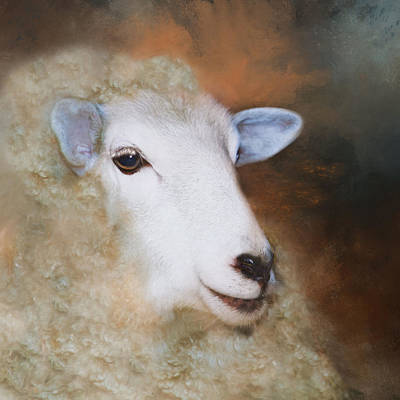 Poster featuring the photograph Fully Woolly by Robin-Lee Vieira