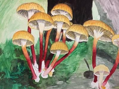 Fungi Poster by Sarah Iwany