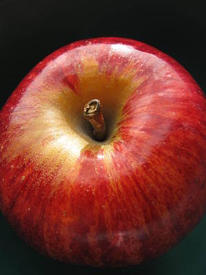Poster featuring the photograph Gala Apple by Lindie Racz