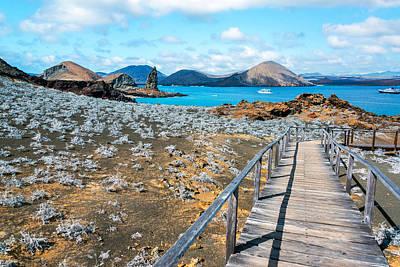 Galapagos Islands View Poster