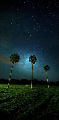 Galaxy Palms Poster