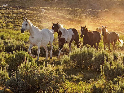 Galloping Down The Mountain Poster