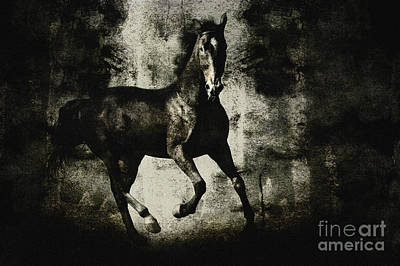Galloping Horse Artwork Poster