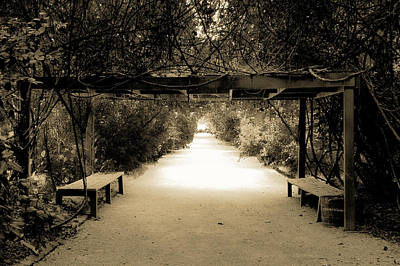 Garden Arbor In Sepia Poster by DigiArt Diaries by Vicky B Fuller