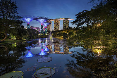 Poster featuring the photograph Garden By The Bay, Singapore by Pradeep Raja Prints