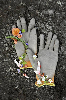 Garden Gloves And Flower Blossoms Poster