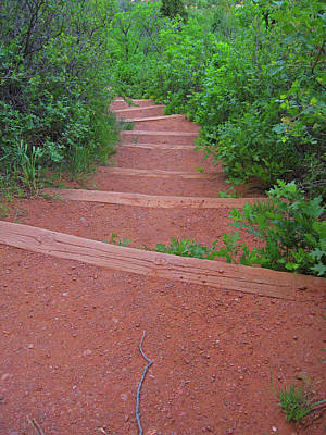 Garden Of The Gods Steps Poster by Tammy Sutherland
