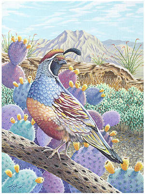 Garden Of The Quail Poster