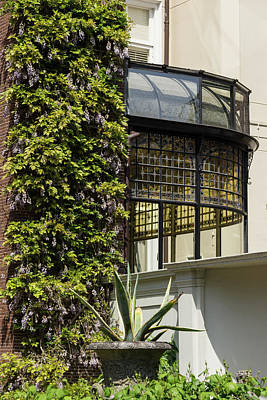 Gardening Delights - Wisteria Aloe Vera And A Stained Glass Canopy - Right Poster
