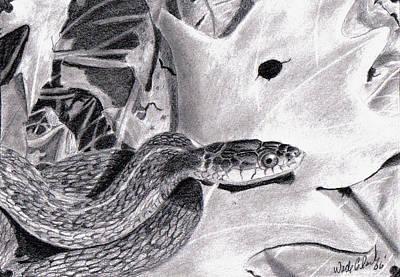 Garter Snake Poster