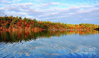 Gatineau Park Autumn Landscape Poster