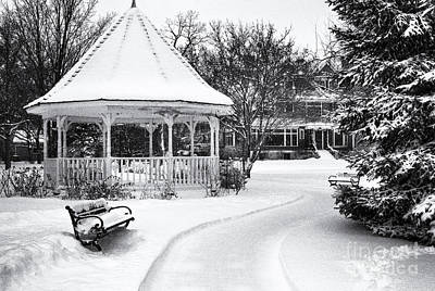 Gazebo At Windom Park Poster