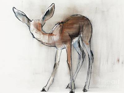 Gazelle Fawn  Arabian Gazelle Poster by Mark Adlington