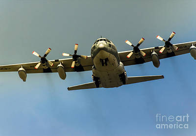 Gear Down C-130 Hercules  Poster by Robert Frederick