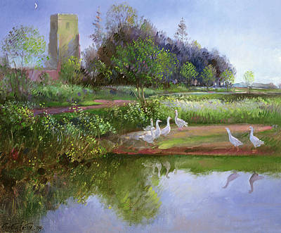 Geese At Sundown Poster by Timothy Easton
