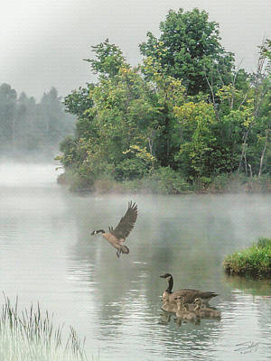 Geese On Misty Lake Poster by IM Spadecaller