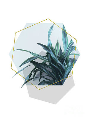 Geometric Jungle Poster