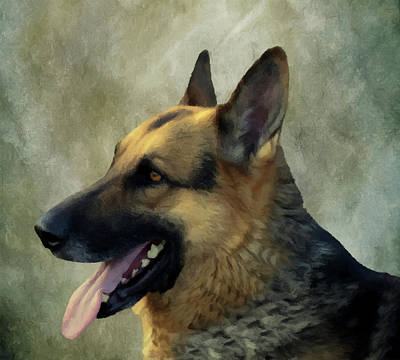 Poster featuring the photograph German Shepherd 405 by David Dehner