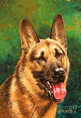 German Shepherd Poster by John Francis