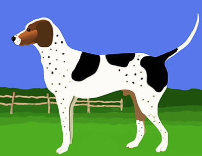 German Shorthaired Pointer In A Field Poster by Marian Cates
