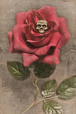Germination Poster by Jeff  Gettis